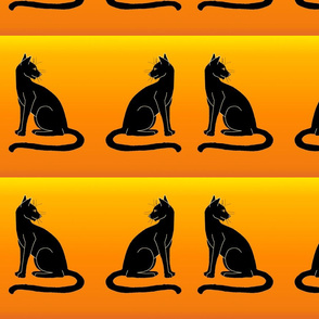 black cats on orange border