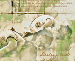 Rrspoonflower_darling_buds_of_maie_thumb