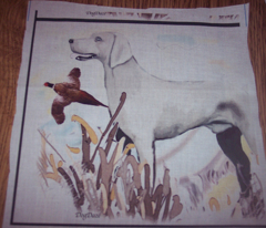 Rrweimaraner_and_pheasant2_comment_115608_preview