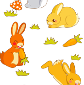 bunnies   white