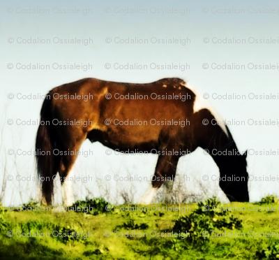 delta horse