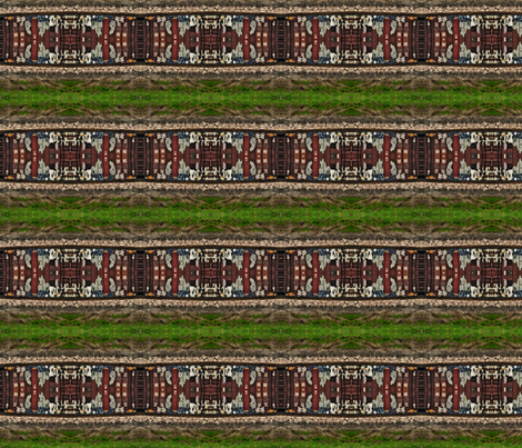 IMGP3048 fabric by codalion on Spoonflower - custom fabric