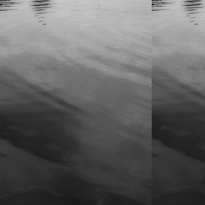 Water_3bw