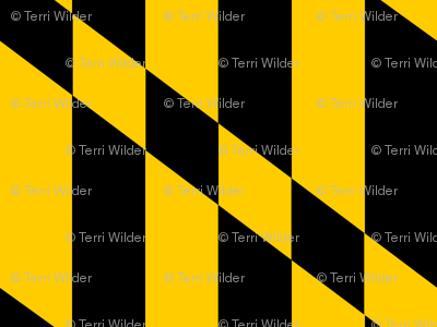 Maryland Flag Stripes