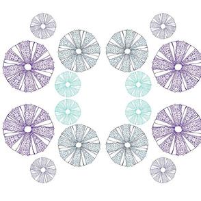 sea_urchin_