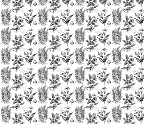 Sketched FLowers fabric by victoriagolden on Spoonflower - custom fabric