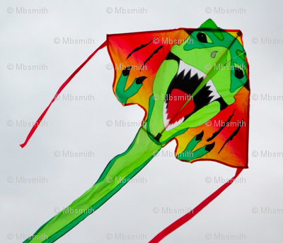 DragonKite -original-