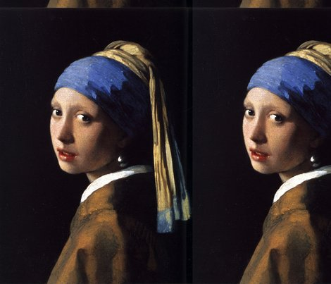 Rrvermeer_-_girl_with_a_pearl_earring_shop_preview