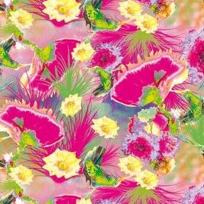 hummingbirds allover