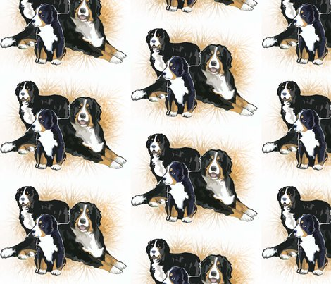 Rrrbernese_mountain_dogs2__shop_preview