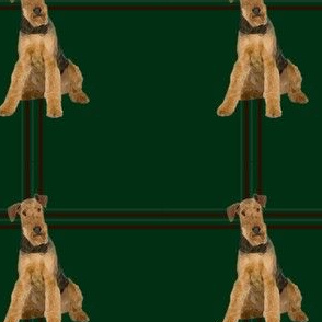 Airedale Plaid #2