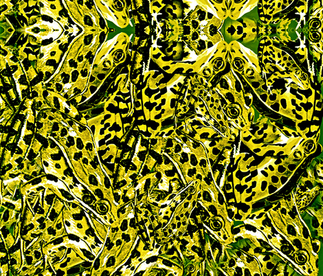 Fabulous Frog Fabric fabric by whimzwhirled on Spoonflower - custom fabric