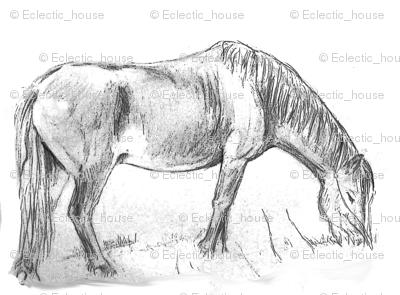 Pony Grazing 2