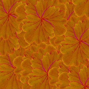 fantasy flowers - orange