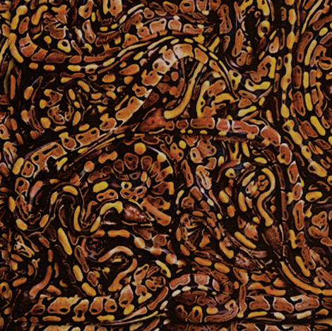 Snake Skin Jacket fabric by whimzwhirled on Spoonflower - custom fabric