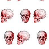 Rr1redskulls_shop_thumb
