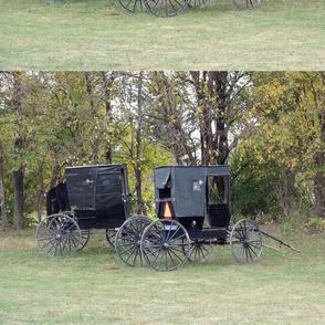 Amish Carts