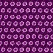 wild_flowerpurple