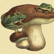 Vintage Frog Stool
