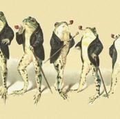 The Gentle Frog