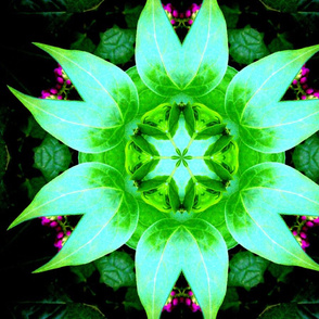 Six leafed green mandala.