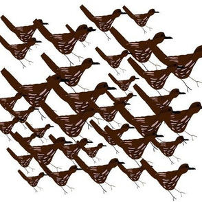 Flock of Wrens large