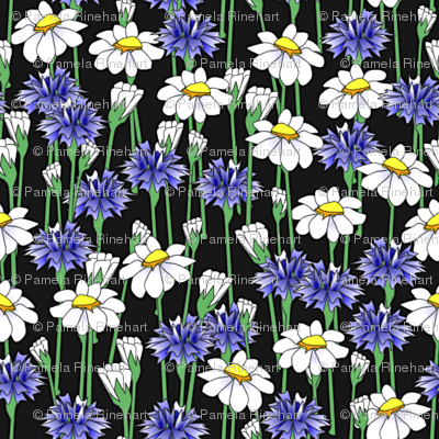 bachelor_buttons_and_daisies big