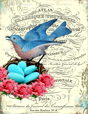 Rrfrench_bluebird_nest_preview