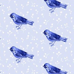 Indigo Song Bird 01