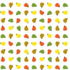 Hedgehog Rows - White Background