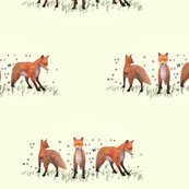 Rrr005-curious_fox__l_shop_thumb