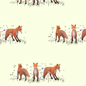 Playing Foxes, L