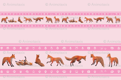 Red Fox Borddr, Pink