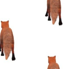 Red Fox Tail, L