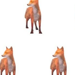 Alert Red Fox, L