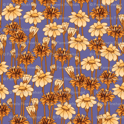 bachelor_buttons_and_daisies_gilded_lilac