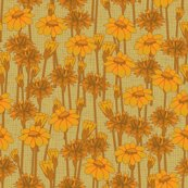 Rrbachelor_buttons_and_daisies_goldenglow_shop_thumb