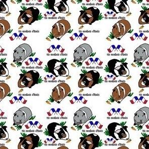 Guinea Pig French