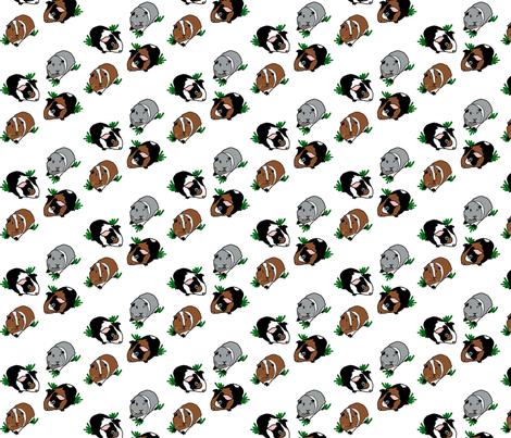Medium Guinea Pigs - Stripe fabric by upcyclepatch on Spoonflower - custom fabric