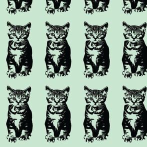 cute cat kitten mint green quirky