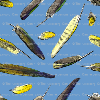 Colorful Conure Feathers - blue