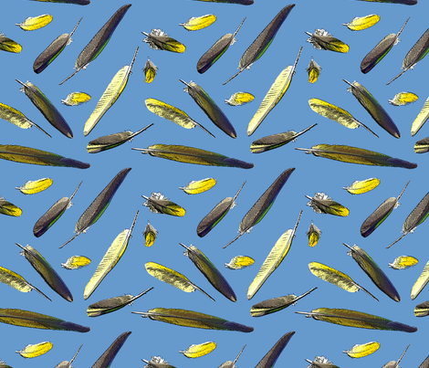 Colorful Conure Feathers - blue fabric by rusticcorgi on Spoonflower - custom fabric