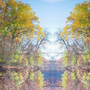 Autumn_Reflection_in_Lake