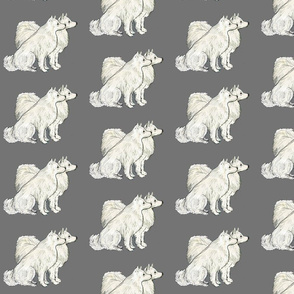 American Eskimo dog fabric
