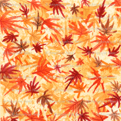 November Maple