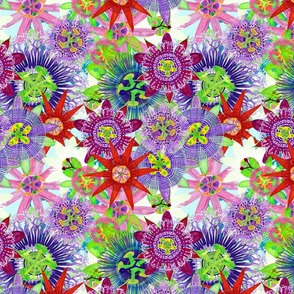 Mix Brazil Passiflora