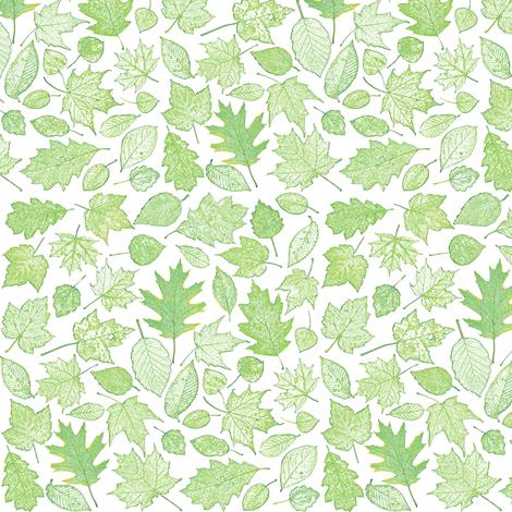 small green leaf etchings fabric by weavingmajor on Spoonflower - custom fabric