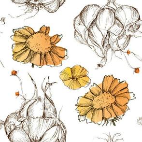 White Garlic Orange Blossom