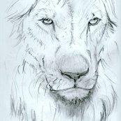 Rrvjezkova_lionbwsmthd_shop_thumb