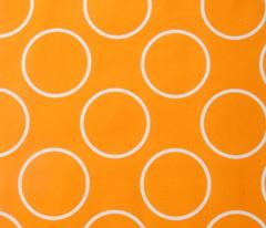 Rrbirdwire_orange_circle_copy_comment_130158_preview